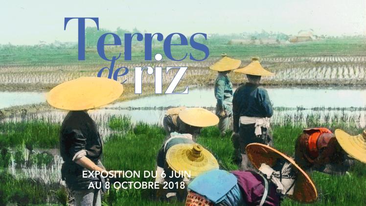 180531_Terres-de-riz_CoverEvenement.png